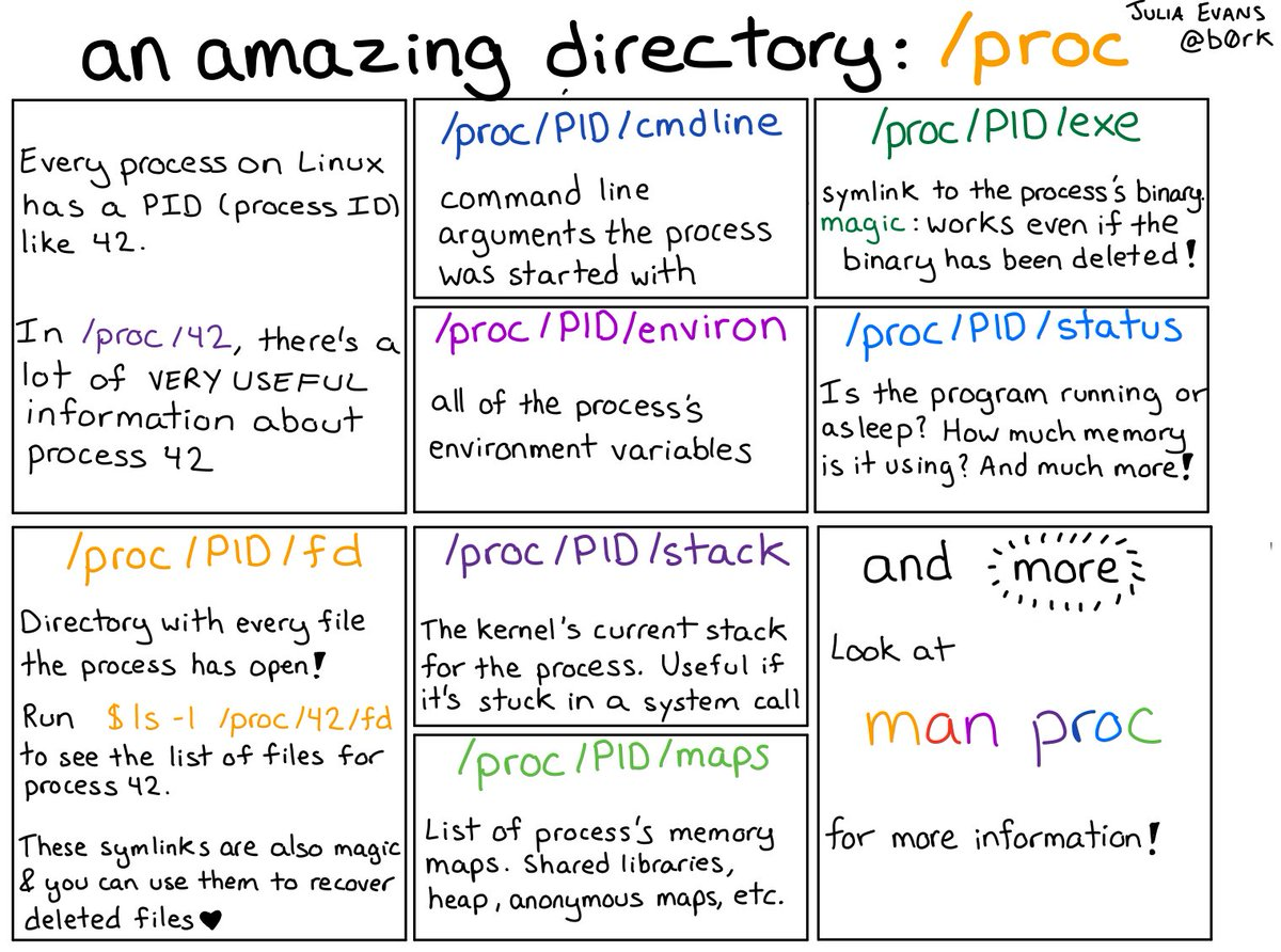 an amazing directory: /proc